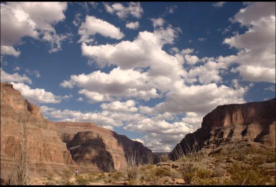 Arizona - About US